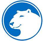 Polar Bear Communications